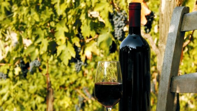 Apretado por la vitivinícolas, Cornejo se reúne con Dujovne