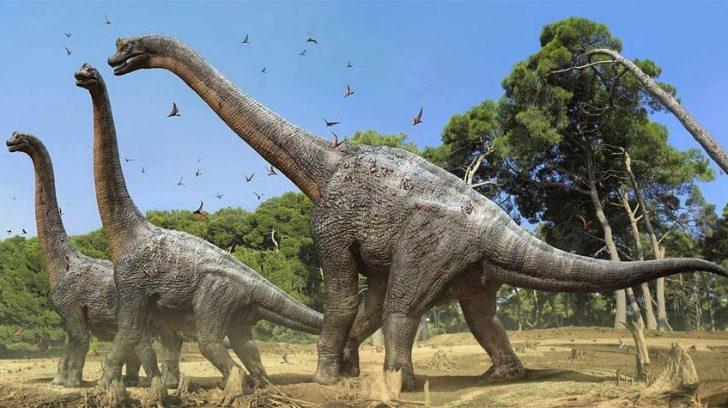 Investigadores dicen haber encontrado el pie de dinosaurio más grande